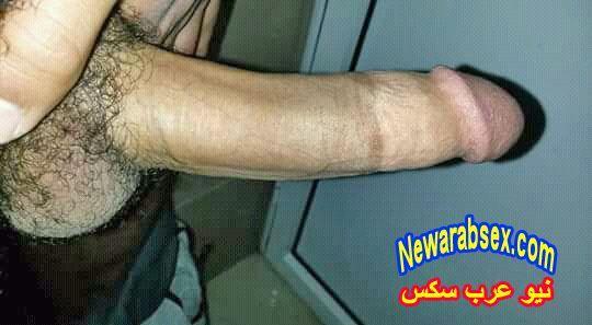 صور زبر عراقي