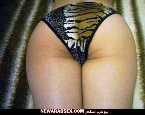 طيز شرموطة من القاهرة